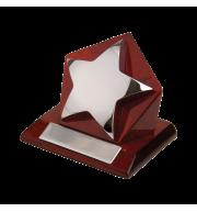 Награда «Звезда»